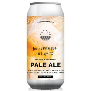Cloudwater Deliverable Insights